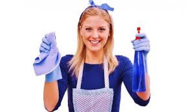 ankara ev temizliği